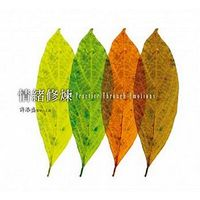 Qing xu xiu lian you sheng shu (12 Disc. CD) (2015 New Version)